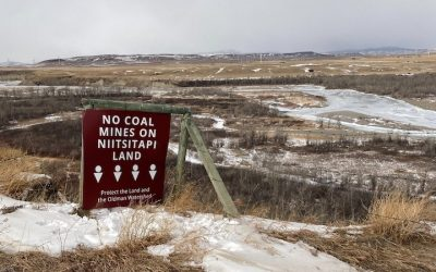 Tent Mountain coal mine: Niitsitapi Water Protectors, landowners group, environmental orgs urge Canada to designate project for assessment