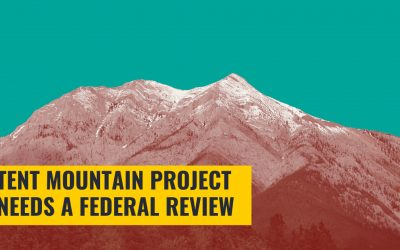 Tent Mountain project will undergo a federal environmental review