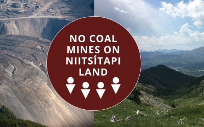 Call for a federal regional assessment of all metallurgical coal mining activity
